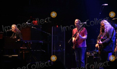 Allman Brothers Photo - The Allman Brothers Perform in Concert at the Beacon Theater in New York on March 10 2011 photo by Sharon Neetlesglobe Photos Inc