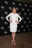 Photo - ABC July 2014 TCA