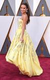 Photos From 88th Annual Academy Awards Arrivals