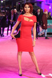 Photo - How to Be Single UK Premiere