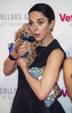 Amanda Abbington Photo - London UK Amanda Abbington at the Battersea Dogs  Cats Home Collars  Coats Gala Ball 2018 at Battersea Evolution on November 01 2018 in London EnglandRef LMK386-J2895-021118Gary MitchellLandmark Media WWWLMKMEDIACOM