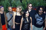 Rusted Root Photo - Rusted Root